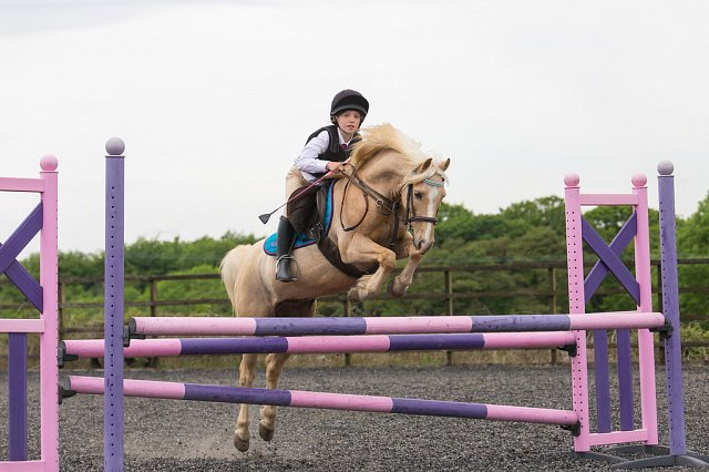 Show Jumping Show - Sunday 29th April 2018
